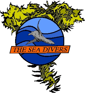 THE SEA DIVERS